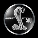 GT500Badge
